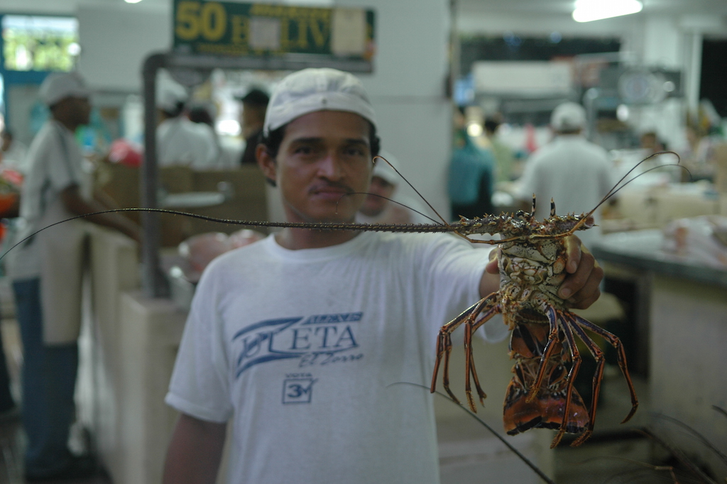 Mercado de Mariscos de Panamá