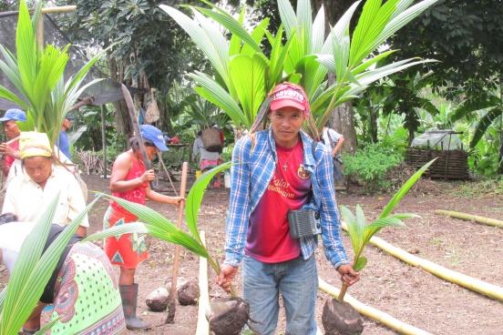 aceite de coco Artesan ANCON